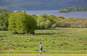 Lakes of Killarney Marathon content writing